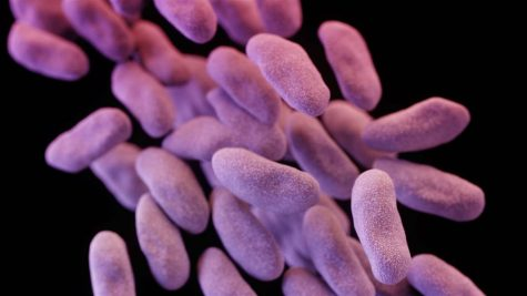 "The ""Nightmare"" Superbug Strikes America"