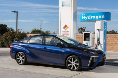 The Hydrogen Fuel Cell