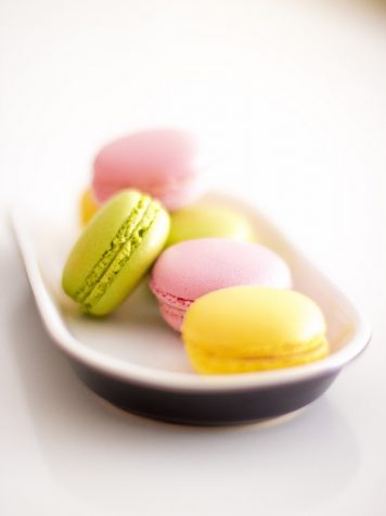 Honey and Butter Serves Cute Creature Macarons