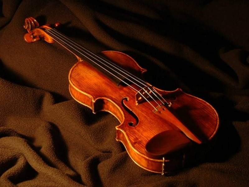 The+violin.+One+of+the+most+important+instruments+in+the+orchestra.