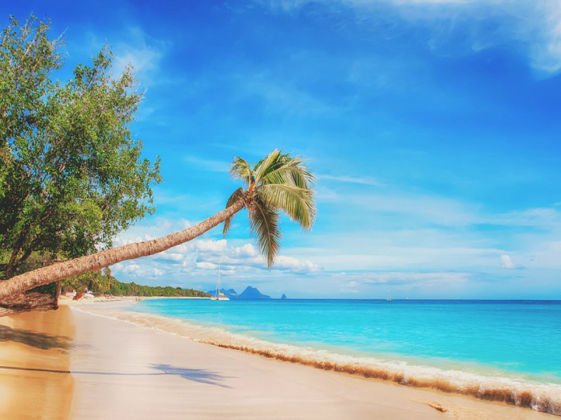 A picture of a Caribbean beach
