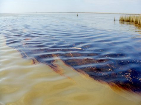 The Sanchi Oil Spill