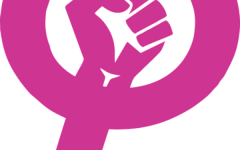 Feminism – Should it Be Advocated?