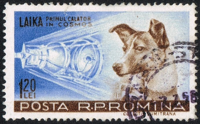 A stamp commemorating Laika