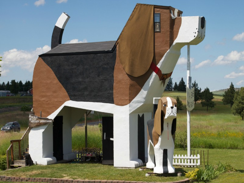A picture of Dog Bark Park