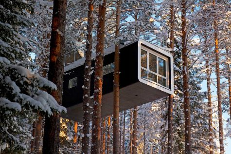 A hotel nestled in large pines.