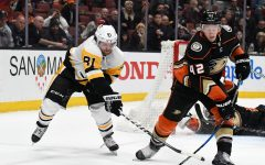 Anaheim Ducks Losing Streak