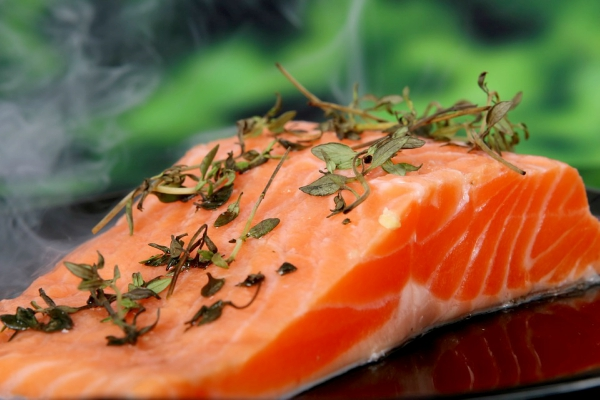 Genetically modified Salmon will soon be in stores after being approved by the FDA