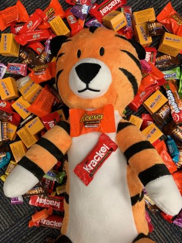 Cubby the Cub Reporter is enjoying the spoils of trick or treating.