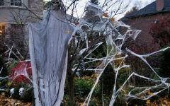 Why Fake Spider Webs Aren't Such a Good Idea