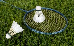 The main utensils to playing the sport of badminton; Racket and shuttlecock.