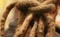 Dreadlocks are cultural, not disgraceful